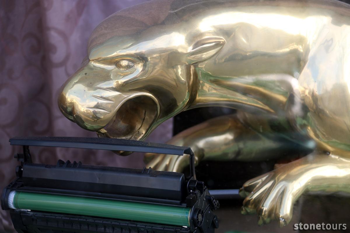 04-jaguar